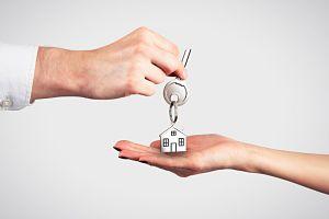 25 ley de arrendamientos urbanos: